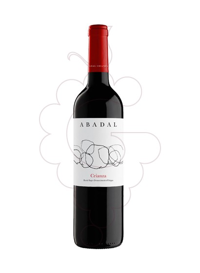 Photo Abadal Criança Magnum Vin rouge