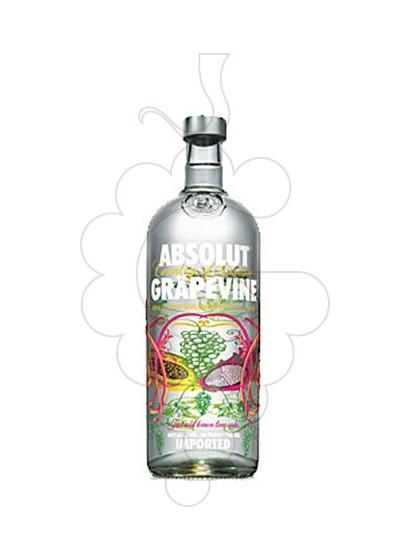 Photo Vodka Absolut Grapevine
