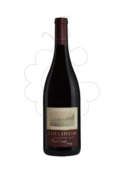 Photo Adelsheim Willamette Valley Pinot Noir Vin rouge