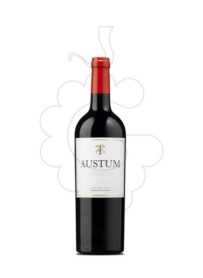 Photo Austum (mini) Vin rouge