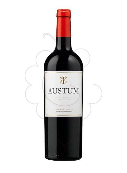 Photo Austum Vin rouge