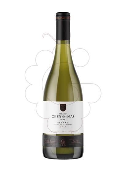 Photo Bernat Oller Picapoll Vin blanc