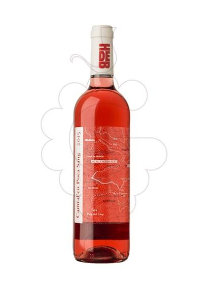 Photo Camí d'en Poca Sang Vin rosé
