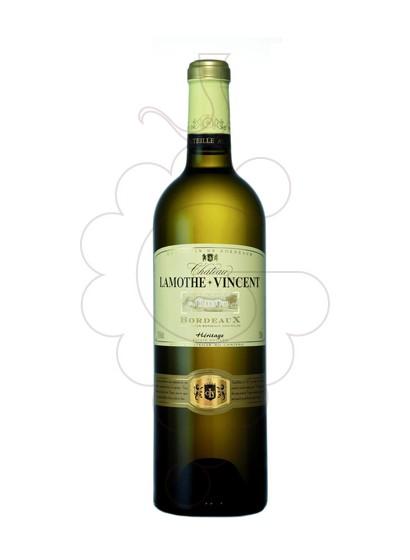 Photo Ch Lamothe Vincent Blanc Vin blanc
