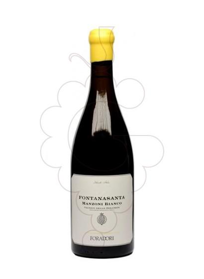 Photo Foradori Fontanasanta Manzoni Vin blanc