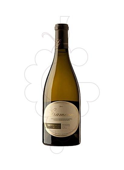 Photo Gramona Sauvignon Blanc Magnum Vin blanc