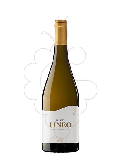 Photo Lineo Vin blanc