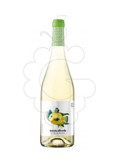 Photo Masia Oliveda Blanc Vin blanc