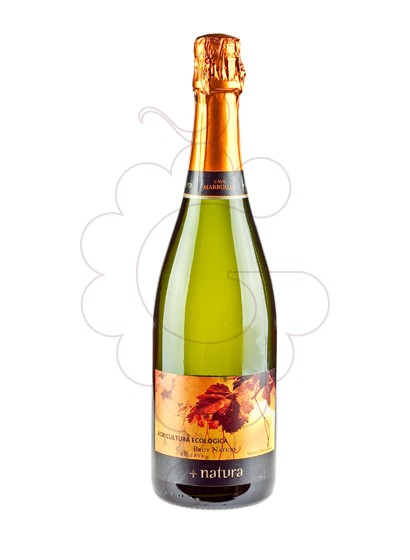 Photo Pinord Natura Brut Nature Vin mousseux