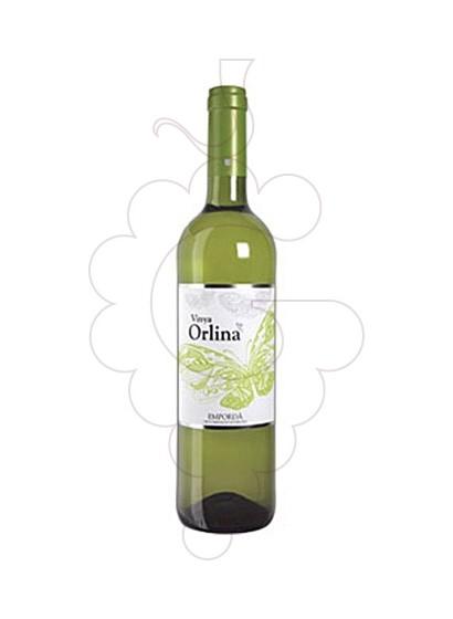 Photo Vinya Orlina Blanc Vin blanc